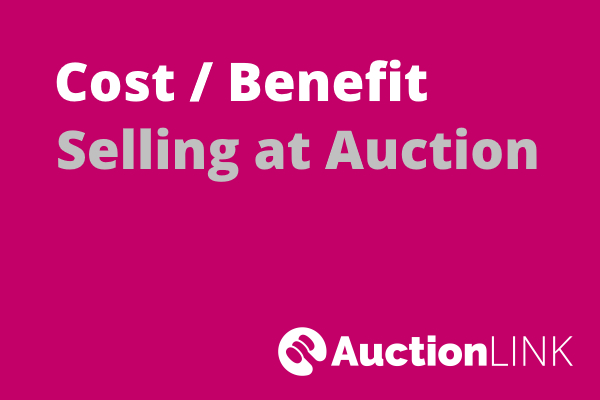 Selling a House at Auction - Costs Benefit Analysis