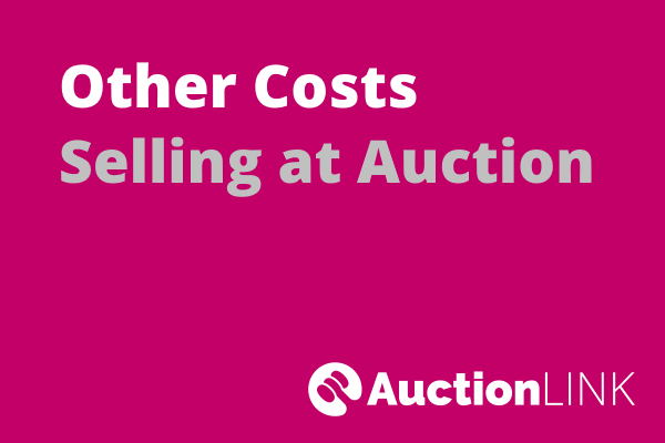 Selling a House at Auction - Other Costs